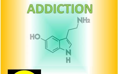 4. HOW ADDICTION WORKS (part IV of V)